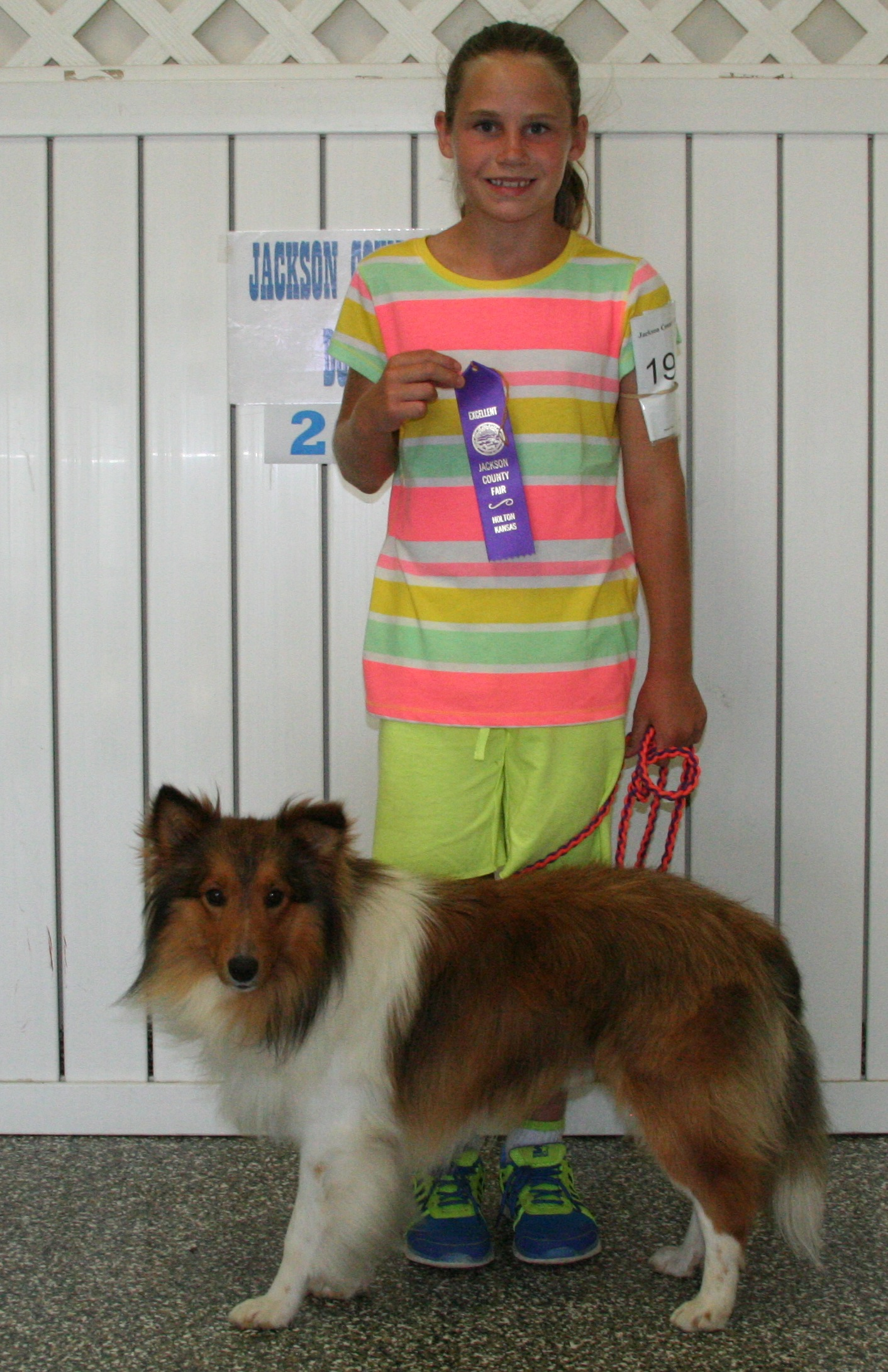 4-H Dog Show | The Holton Recorder