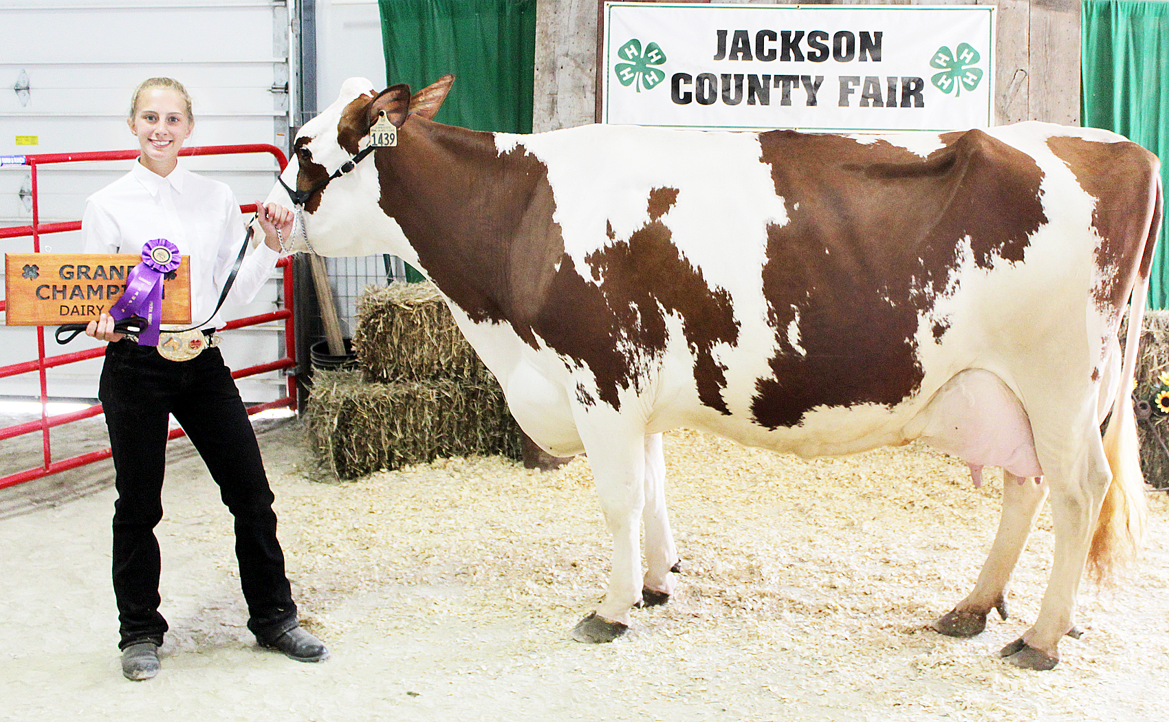 Shelby Phillips - Grand Champion Dairy Beef