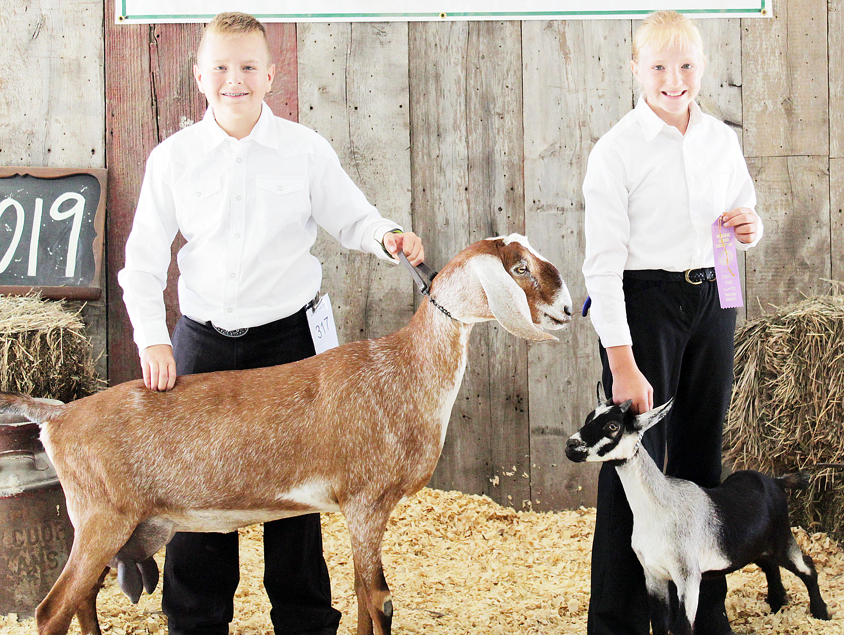 Tristan Simpson-Worley, Rebecca Halbleib - Junior Dairy Goat Showmanship