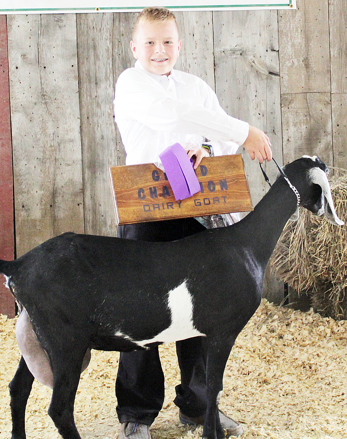 Tristan Simpson-Worley - Overall Dairy Goat Champion