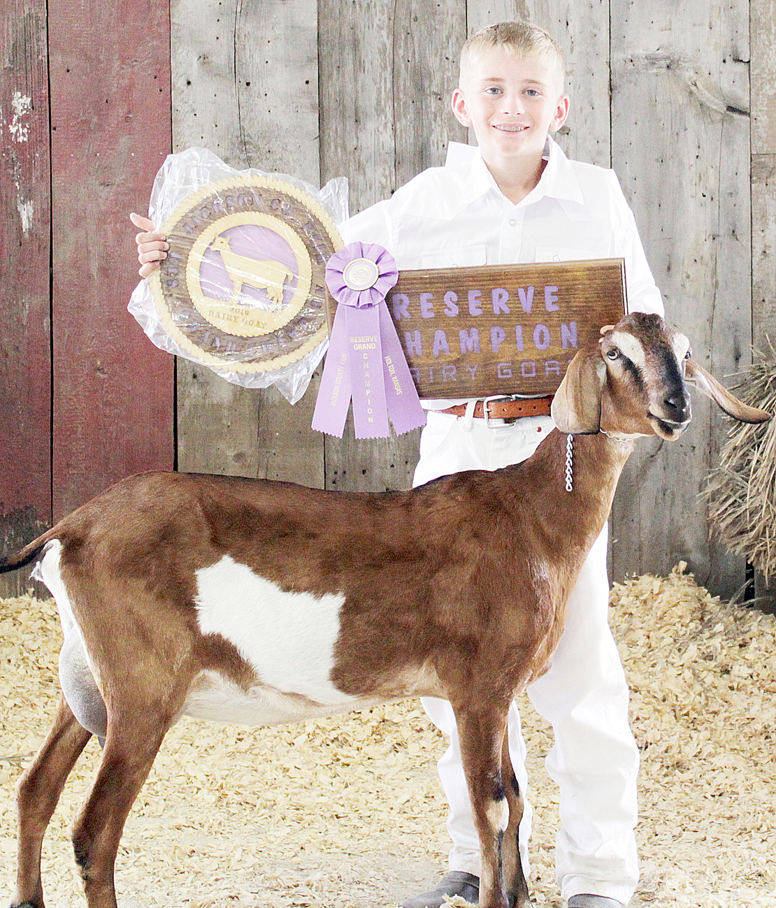 Tucker Terry - Reserve Champion Dairy Goat