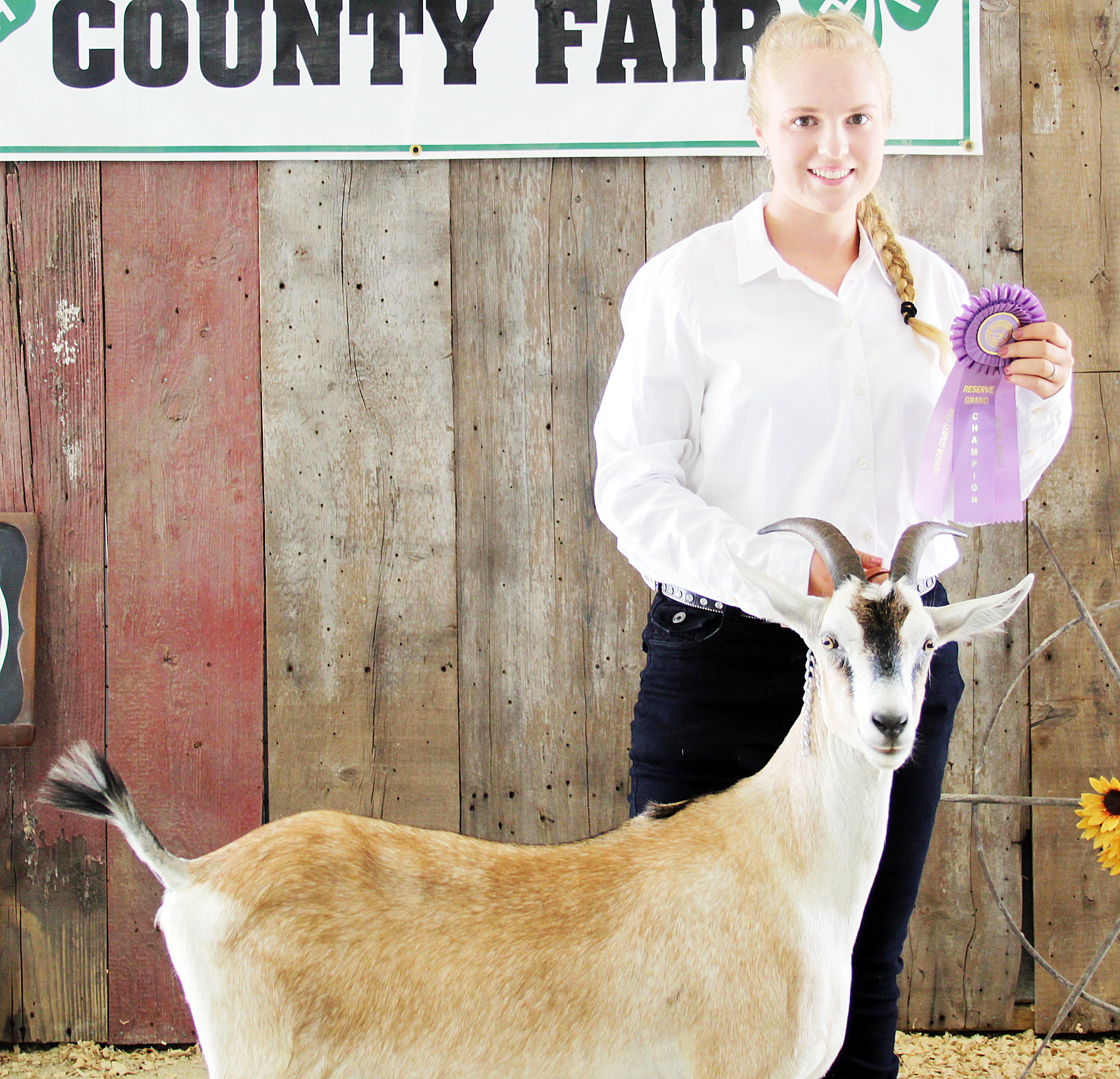 Naomi Halbleib of the Denison Builders 4-H Club was named reserve champion senior dairy goat showman at the 2020 Jackson County Fair.