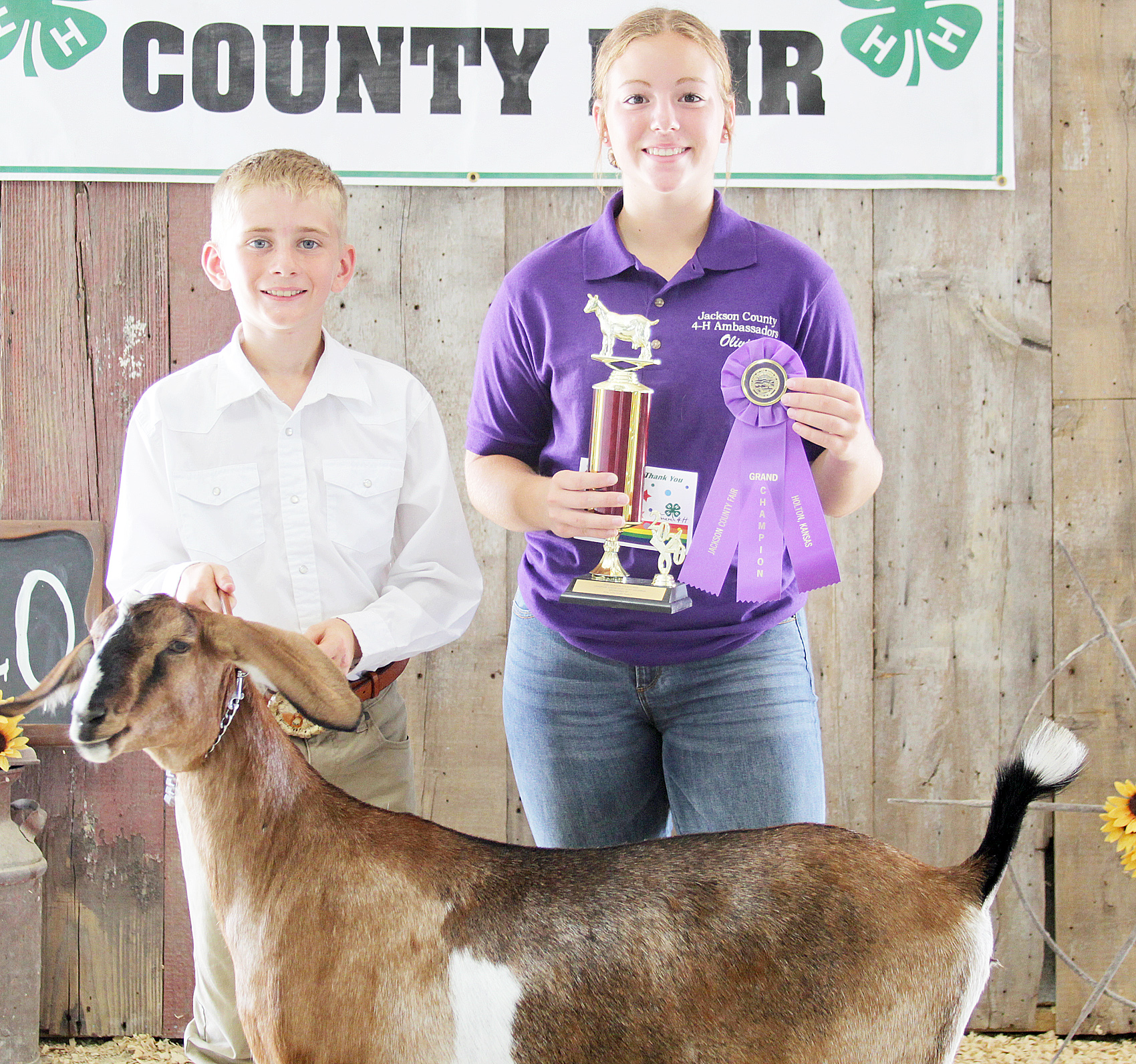 Tucker Terry of the Soldier Boosters 4-H Club was named champion junior dairy goat showman at the 2020 Jackson County Fair.
