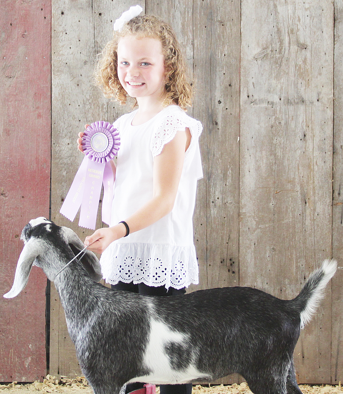Kenna Simpson-Worley of the Ontario Busy Bees 4-H Club was named reserve champion beginner dairy goat showman at the 2020 Jackson County Fair.