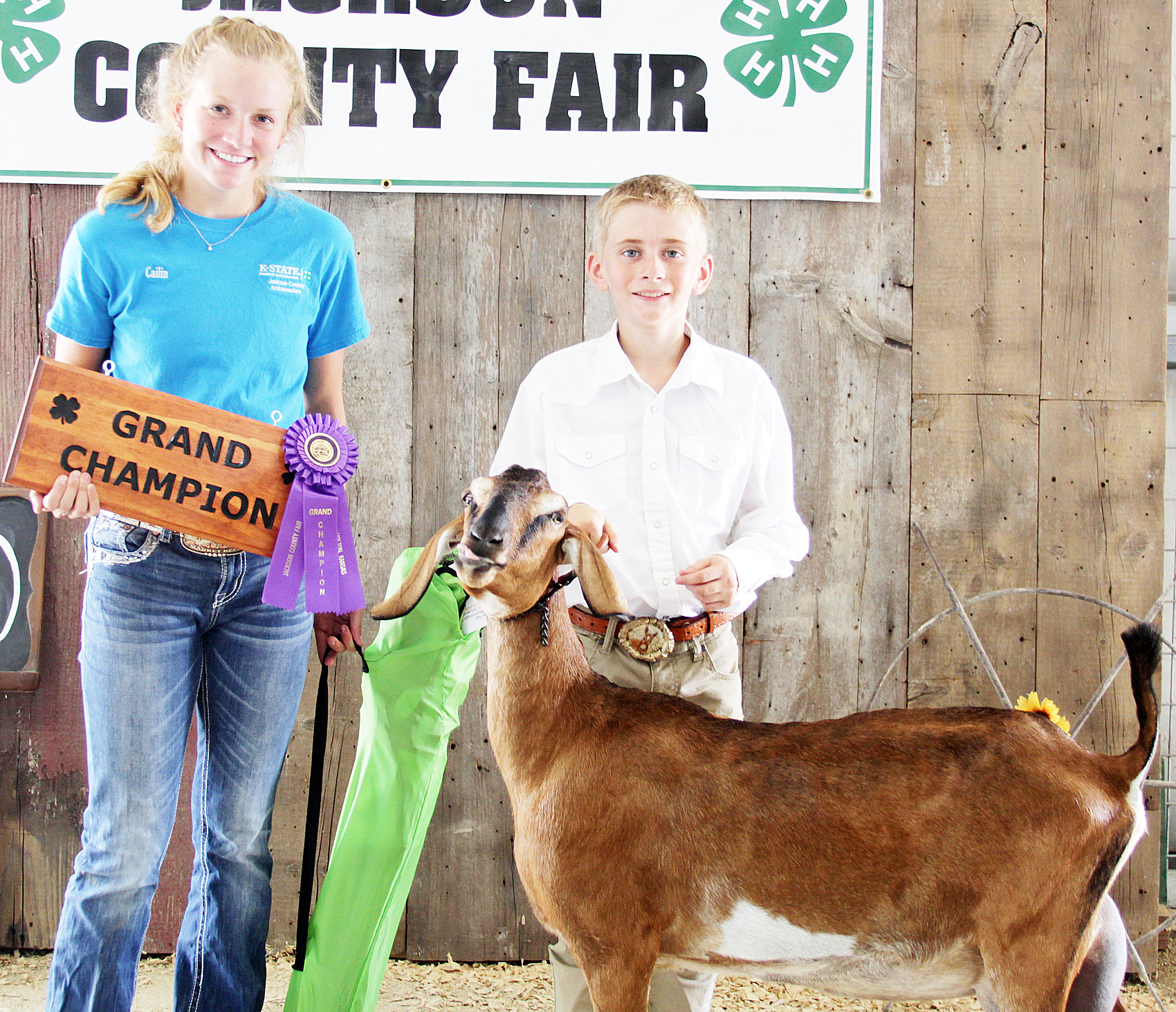 Tucker Terry of the Soldier Boosters 4-H Club showed the grand champion overall dairy goat at the 2020 Jackson County Fair.