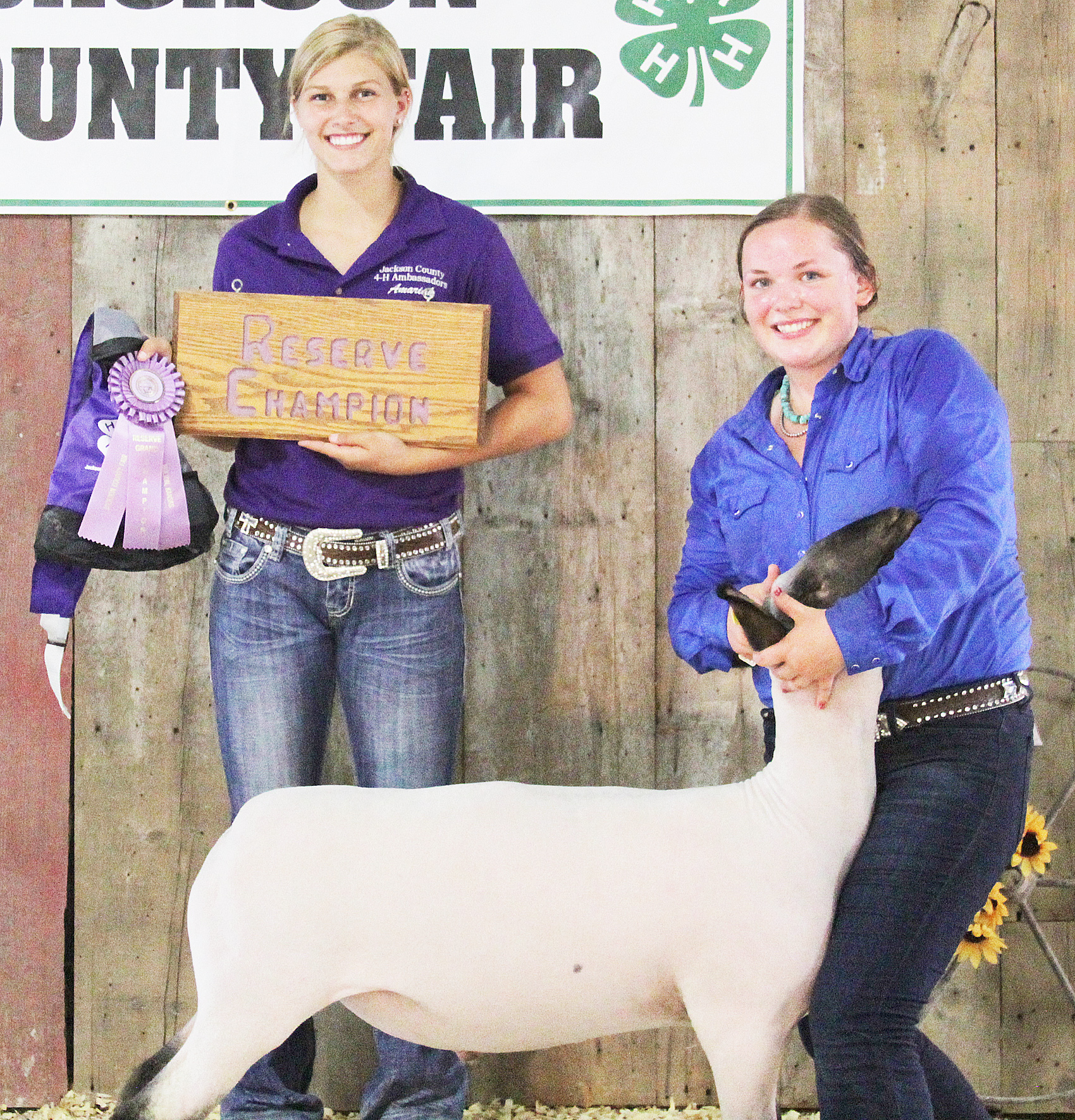Jerilyn Nelson of the Pleasant Ridge Rustlers 4-H Club showed the Reserve Grand Champion market lamb at the 2020 Jackson County Fair.