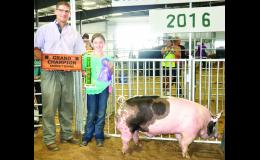 Cassandra Fund (right) took home grand champion market hog honors with her crossbred market hog during the Jackson County Swine Show on Tuesday. Fund is pictured with judge Zach McCracken.
