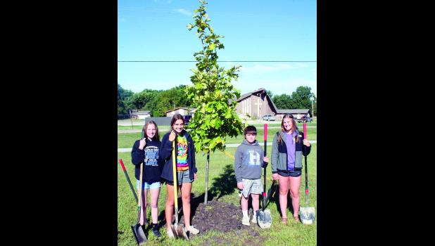 Holton Middle School students (from left) Bailey Kathrens, Emberlee Allen, Jack Etzel and Marley Gilliland, all members of the school's Kansas Association for Youth (KAY) chapter, recently filled in the dirt around a swamp white oak tree, planted with the help of Holton city employees, at Holton's Countryside Park. The tree-planting was heralded as the KAY chapter's last part of its park improvement plan, which began with fund-raising for construction of the park's concrete fitness path.