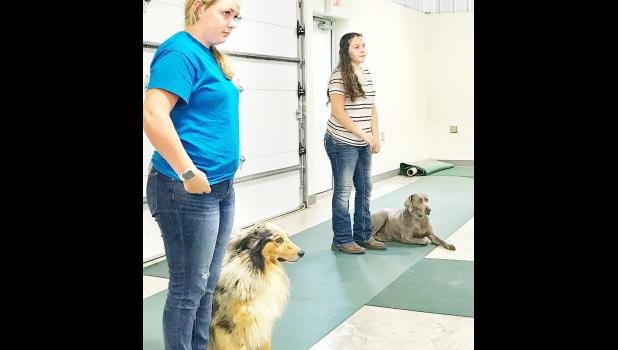 Participants at the Jackson County Fair's dog show at the fairgrounds last Saturday morning included Jerilyn Nelson (left) of the Pleasant Valley Rustlers and Natalie Woods of the Hoyt Livewires. The 4-H'ers and their dogs competed in shownmanship, agility off lead and obedience categories. (Photo by David Powls)