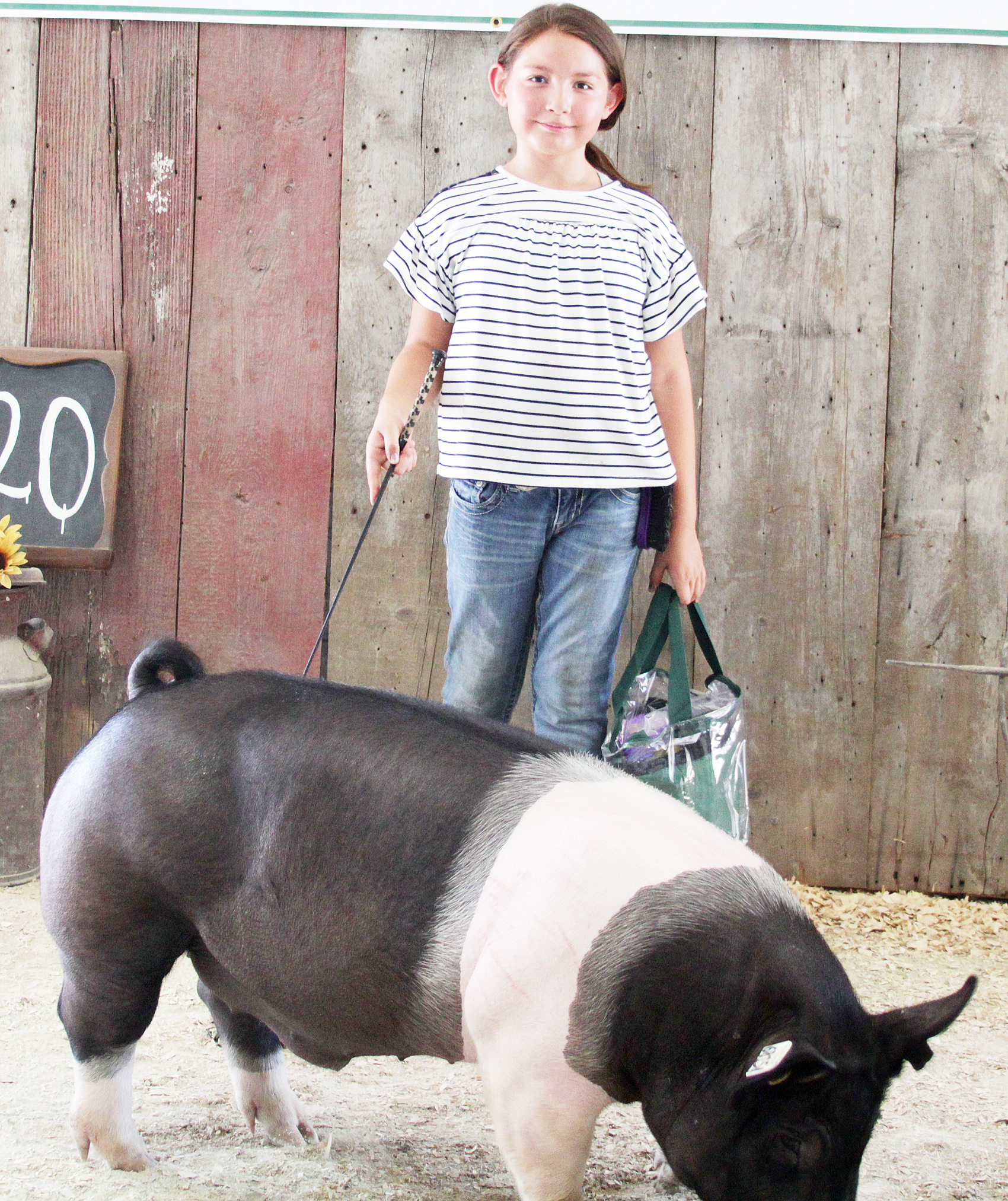 Harper Mitchell of the Mayetta Mustangs 4-H Club showed the Champion Hampshire market hog at the 2020 Jackson County Fair.