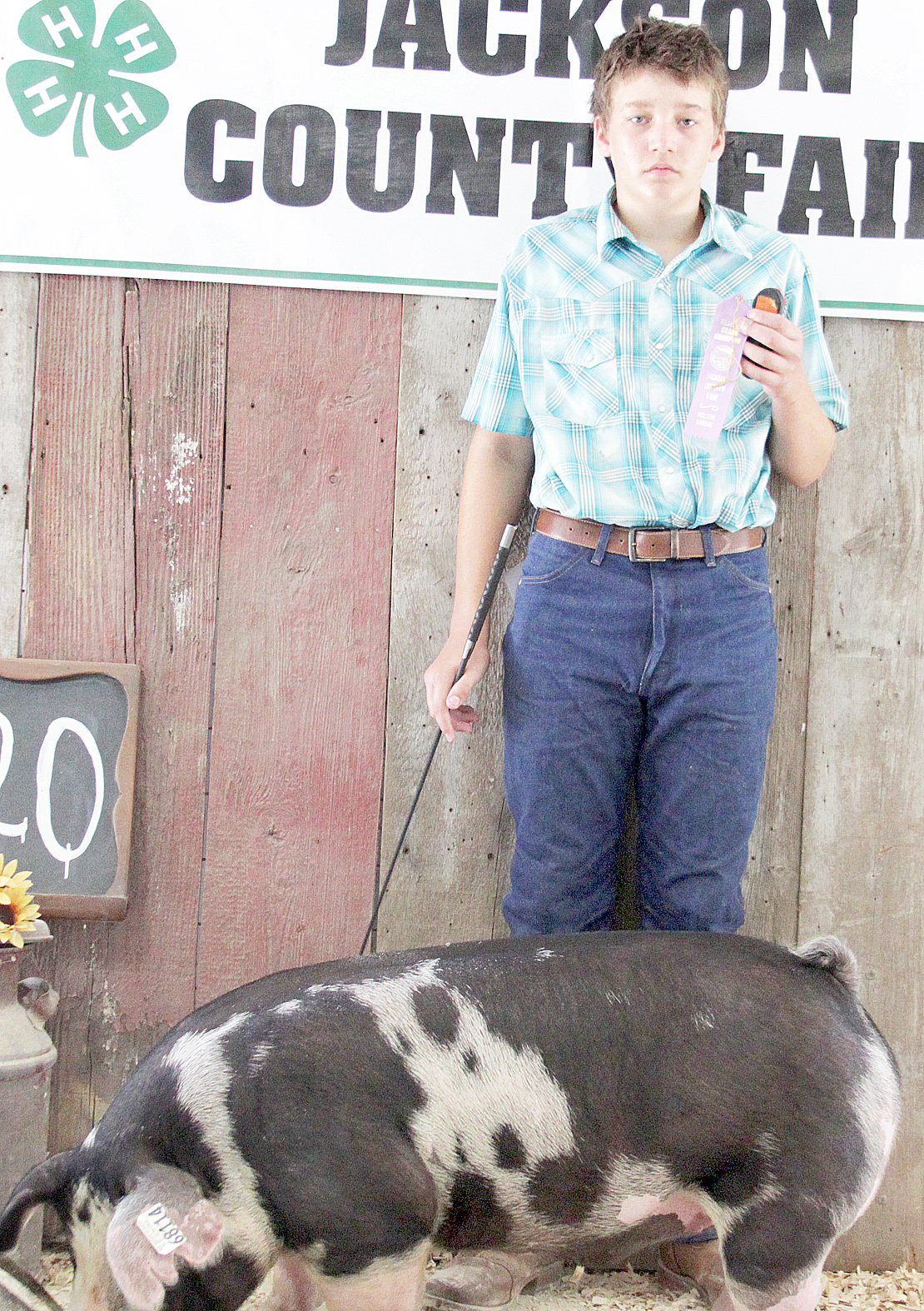 James Beauchamp of the Ontario Busy Bees 4-H Club showed the Reserve Champion Spot market hog at the 2020 Jackson County Fair.