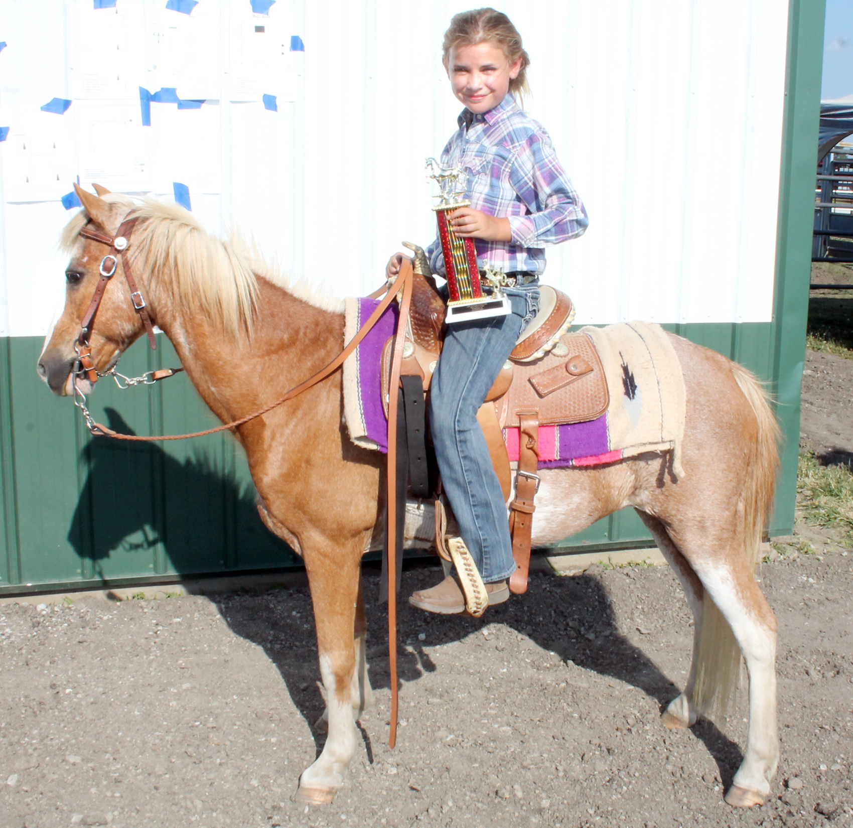 Cally Stephens won the walk-trot and horsemanship competitions in the 7-9 age group at this year's horse show. She is a member of the Denison Builders 4-H club.