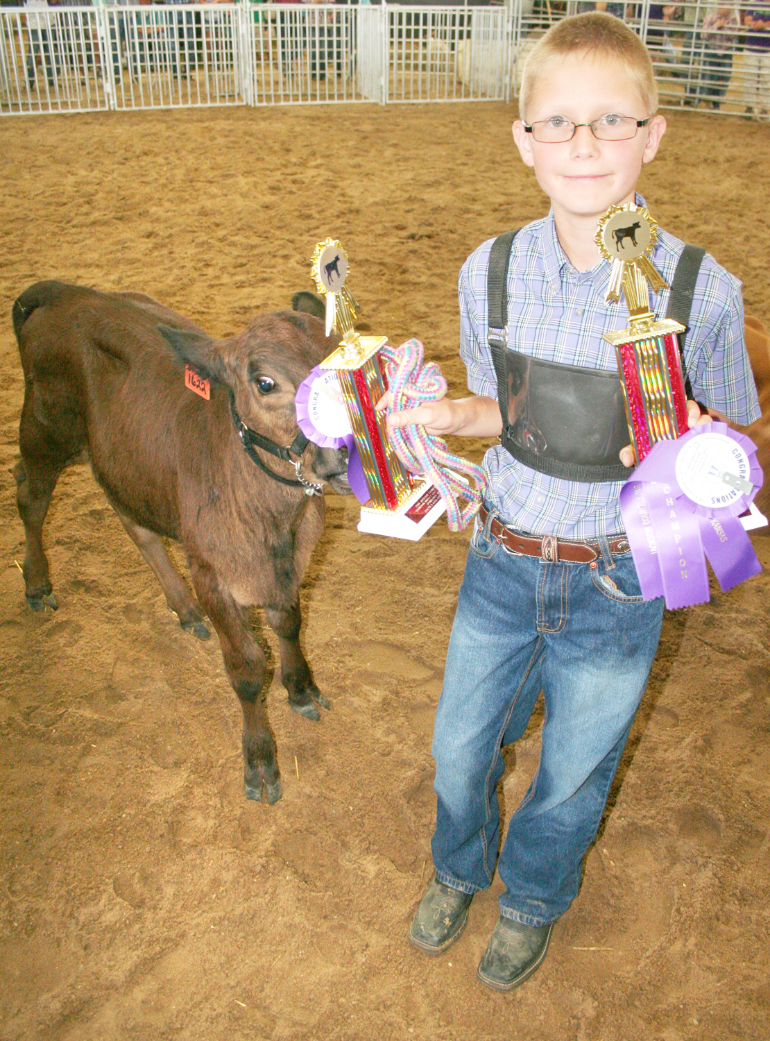 Kyler Kathrens of the Lucky Stars won best of show and overall champion honors in the 9-12 bucket calf show. (Photo by Brian Sanders)