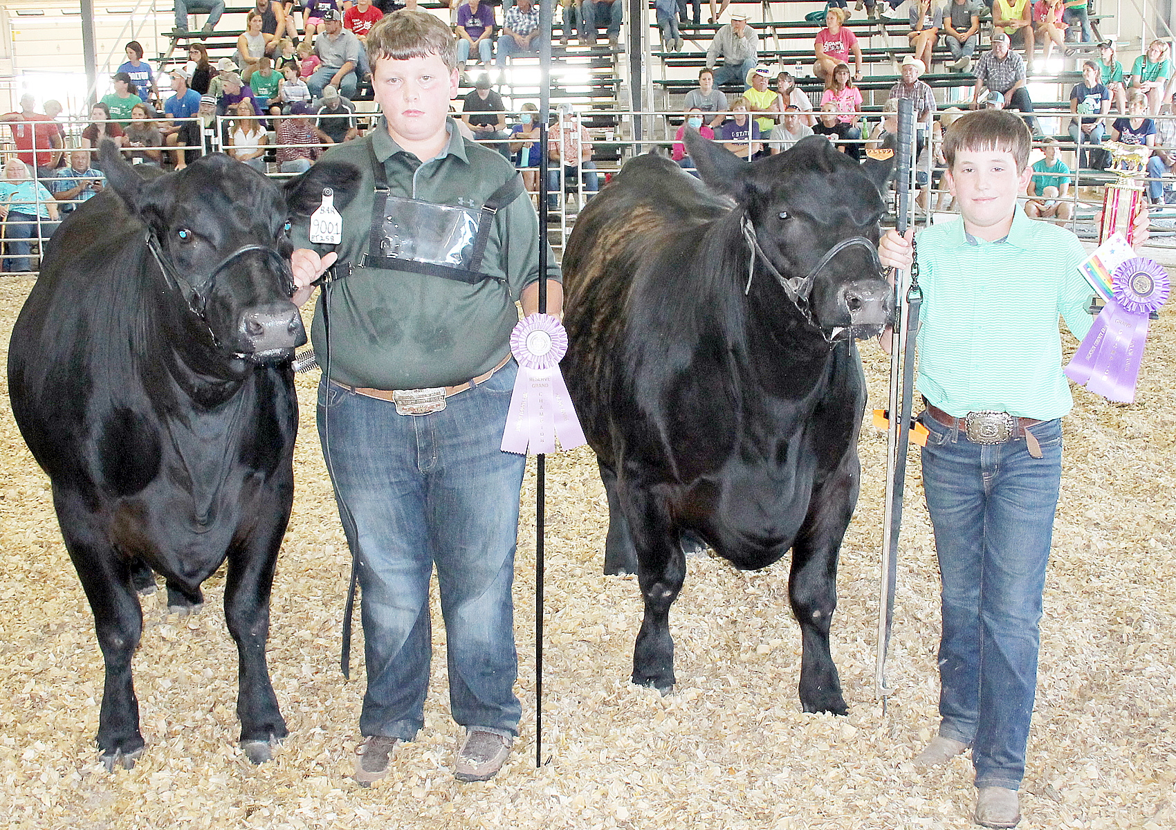 In junior beef showmanship, Paden Askren (right) of the North Jackson Jets was named champion while Ean Winsor (left) of the Lucky Stars was named reserve champion.