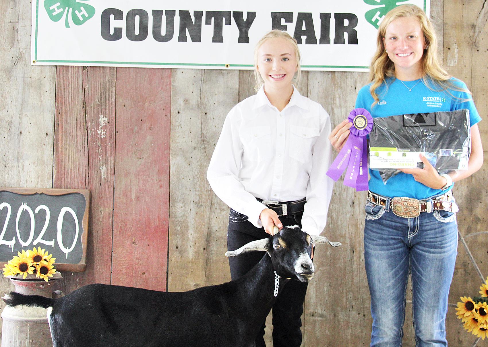 Sarah Halbleib of the Denison Builders was named senior dairy goat showman at the 2020 Jackson County Fair.