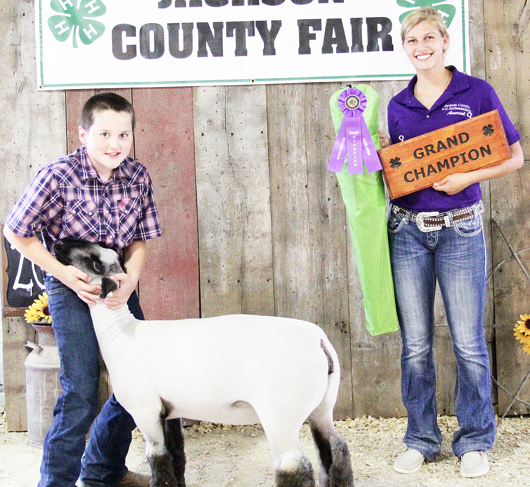 Gage Schultz of the Hoyt Livewires 4-H Club showed the Grand Champion overall ewe at the 2020 Jackson County Fair.